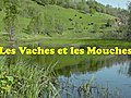 LesVachesetlesMouches