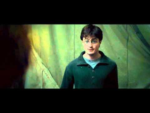 HarryPotterAndTheDeathlyHallowsPart1SceneHarryAndRonFightingExyiExVideos