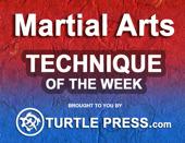MartialArtsTechniqueoftheWeekTaekwondoSparringKickingCombination