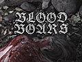BloodBoarsShort2010