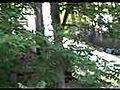 WoodWardCampBigAirJumpAirbagGolfCartStyle