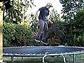TrampolineSkateboarding