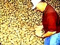 PotatoFarmerPoetry