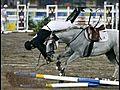 horsefallspainthreedaysgrace