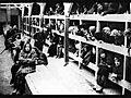 holocaustprojectvideo