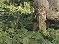fishingwithrobsongreen
