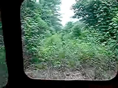 OvergrownRailroad