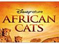 AfricanCatsDVDBonusYourMothersDaughter