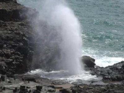 MauiOfficialsRespondToVisitorsDeath